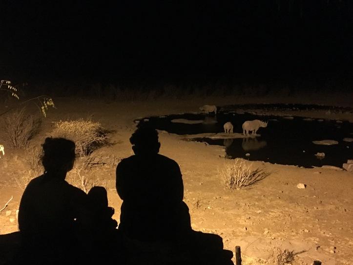 rhino nuit